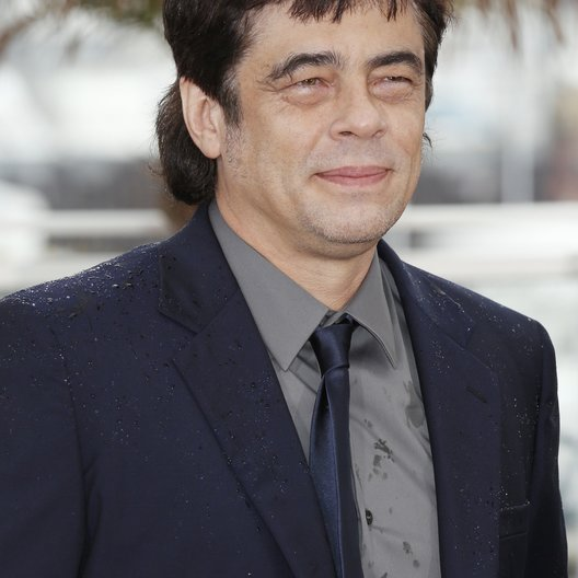 Del Toro, Benicio / 66. Internationale Filmfestspiele von Cannes 2013 / Festival de Cannes Poster