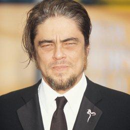 del Toro, Benicio / Benicio Del Toro Poster