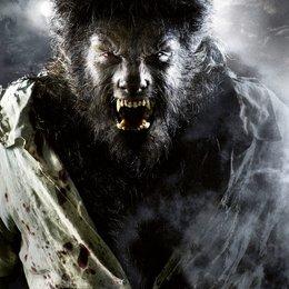 Wolfman, The / Benicio Del Toro Poster