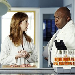 Body of Proof / Dana Delany / Windell Middlebrooks Poster