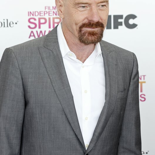 Bryan Cranston / Film Independent Spirit Awards 2013