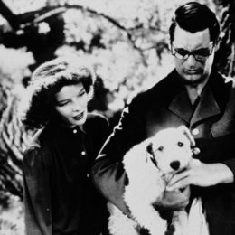 Leoparden küßt man nicht / Katharine Hepburn / Cary Grant / Bringing Up Baby Poster