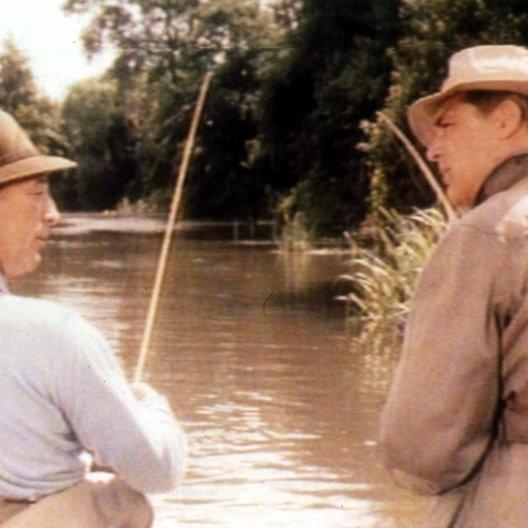 Vor Hausfreunden wird gewarnt / Robert Mitchum / Cary Grant Poster