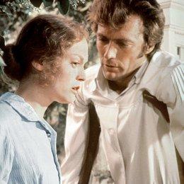 Betrogen / Elizabeth Hartman / Clint Eastwood Poster