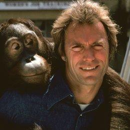 Mann aus San Fernando, Der / Clint Eastwood Poster
