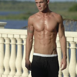 Fighters, The / Cam Gigandet Poster