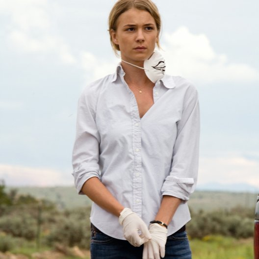 Carriers / Emily VanCamp Poster