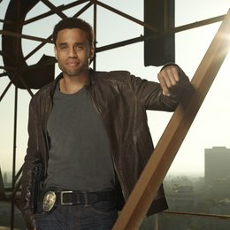 Common Law / Michael Ealy Poster