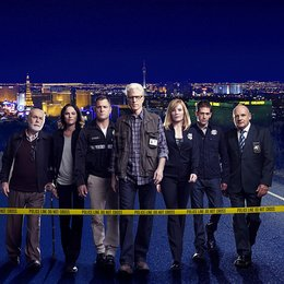 CSI: Vegas / Marg Helgenberger / Ted Danson / Robert David Hall / Paul Guilfoyle / Jorja Fox / George Eads / Eric Szmanda Poster