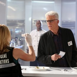 CSI: Crime Scene Investigation - Season 14.1 Poster