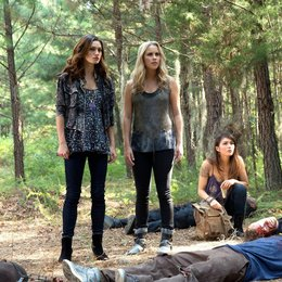Originals, The / Claire Holt / Phoebe Tonkin / Daniella Pineda Poster
