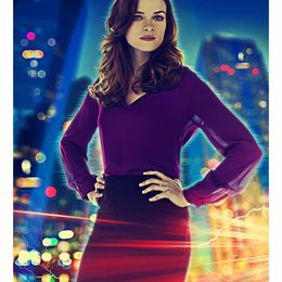 Flash, The / Danielle Panabaker Poster