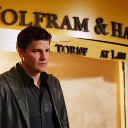 Angel - Jäger der Finsternis: Season 5.1 Collection / David Boreanaz Poster