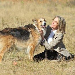 Darling Companion - Ein Hund fürs Leben / Diane Keaton Poster
