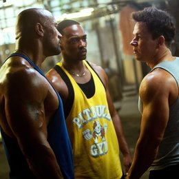 Pain & Gain / Dwayne Johnson / Anthony Mackie / Mark Wahlberg Poster