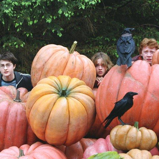 Harry Potter und der Gefangene von Askaban / Daniel Radcliffe / Emma Watson / Rupert Grint