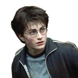 Harry Potter und der Gefangene von Askaban / Daniel Radcliffe - freigestellt Poster