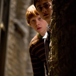 Harry Potter und der Halbblutprinz / Rupert Grint / Daniel Radcliffe Poster