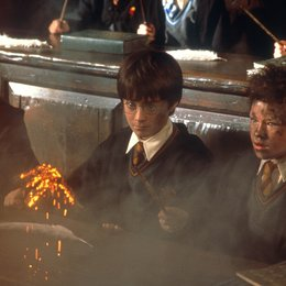 Harry Potter und der Stein der Weisen / Daniel Radcliffe Poster