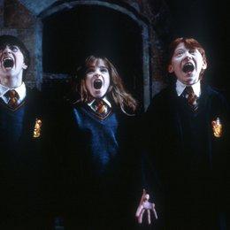 Harry Potter und der Stein der Weisen / Daniel Radcliffe / Emma Watson / Rupert Grint Poster