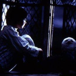 Harry Potter und der Stein der Weisen / Daniel Radcliffe
