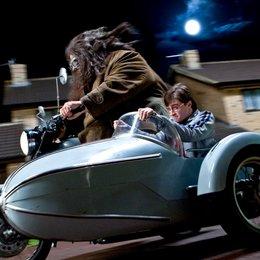 Harry Potter und die Heiligtümer des Todes Teil 1 / Daniel Radcliffe Poster
