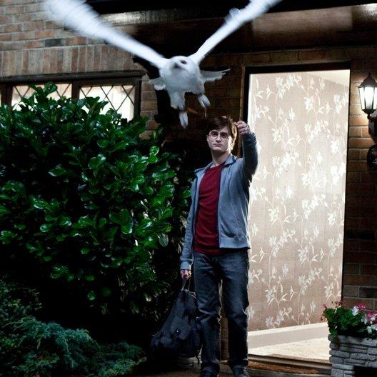 Harry Potter und die Heiligtümer des Todes Teil 1 / Daniel Radcliffe / Harry Potter und die Heiligtümer des Todes - Teil 1 & 2 Poster