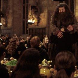 """Harry Potter und die Kammer des Schreckens / Robbie Coltrane """"Hadrid"""" / Daniel Radcliffe """"Harry Potter"""" Poster"""