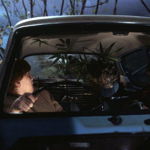 """Harry Potter und die Kammer des Schreckens / Rupert Grint """"Ron Weasley"""" / Daniel Radcliffe """"Harry Potter"""" Poster"""