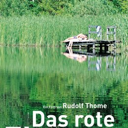 rote Zimmer, Das Poster