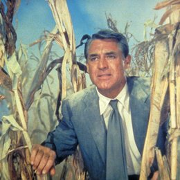 unsichtbare Dritte, Der / Cary Grant