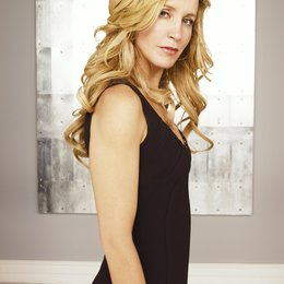 Desperate Housewives / Felicity Huffman Poster