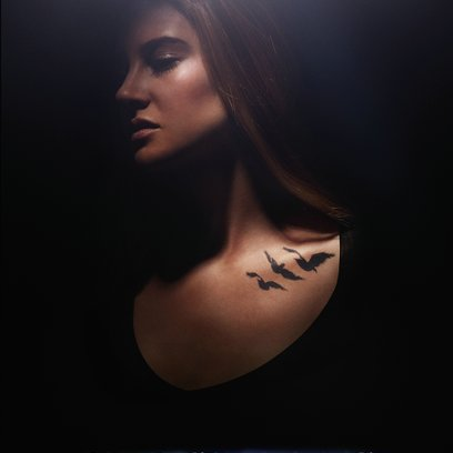 Die Bestimmung - Divergent / Divergent - Die Bestimmung Poster