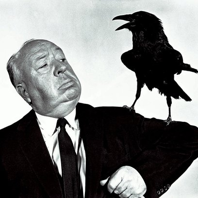 Vögel, Die Poster