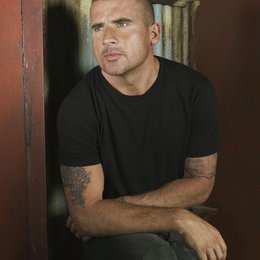 Prison Break (4. Staffel, 22 Folgen) / Dominic Purcell