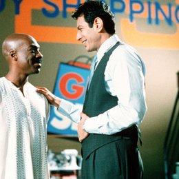 Guru, Der / Jeff Goldblum / Eddie Murphy Poster
