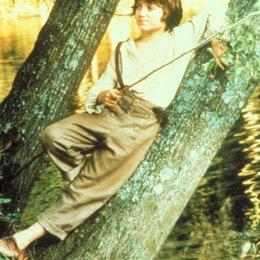 Abenteuer von Huck Finn, Die / Abenteuer des Huck Finn, Die / Elijah Wood