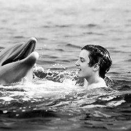 Flipper / Elijah Wood / Delphin