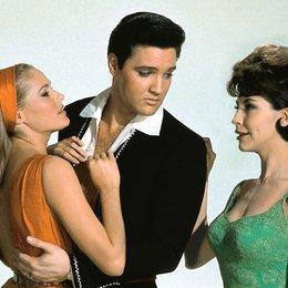 Acapulco / Ursula Andress / Elvis Presley / Elsa Cardenas Poster