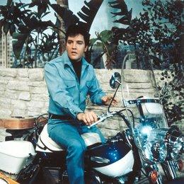 Clambake - Nur nicht Millionär sein / Elvis Presley Poster
