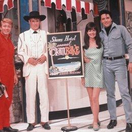 Clambake - Nur nicht Millionär sein / Set / Shelley Fabares / Elvis Presley Poster