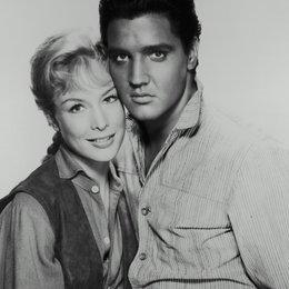 Flammender Stern / Barbara Eden / Elvis Presley Poster