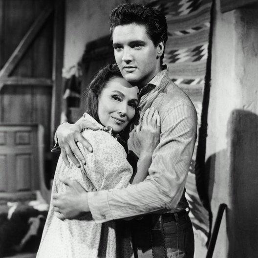 Flammender Stern / Dolores Del Rio / Elvis Presley Poster