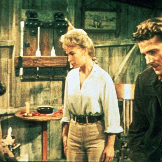 Flammender Stern / Elvis Presley / Barbara Eden / Steve Forrest Poster