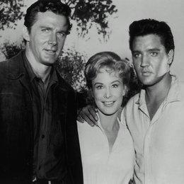 Flammender Stern / Steve Forrest / Barbara Eden / Elvis Presley Poster