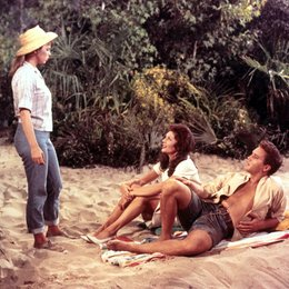 Sommer in Florida, Ein / Anne Helm / Joanna Moore / Elvis Presley Poster