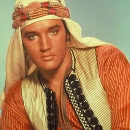 Verschollen im Harem / Elvis Presley Poster