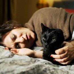 Glück ist eine Katze, Das (ARD) / Eva Mattes Poster