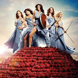 Desperate Housewives (6. Staffel, 22 Folgen) / Teri Hatcher / Marcia Cross / Felicity Huffman / Eva Longoria / Dana Delany Poster