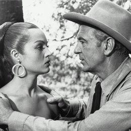 Vera Cruz / Gary Cooper Poster